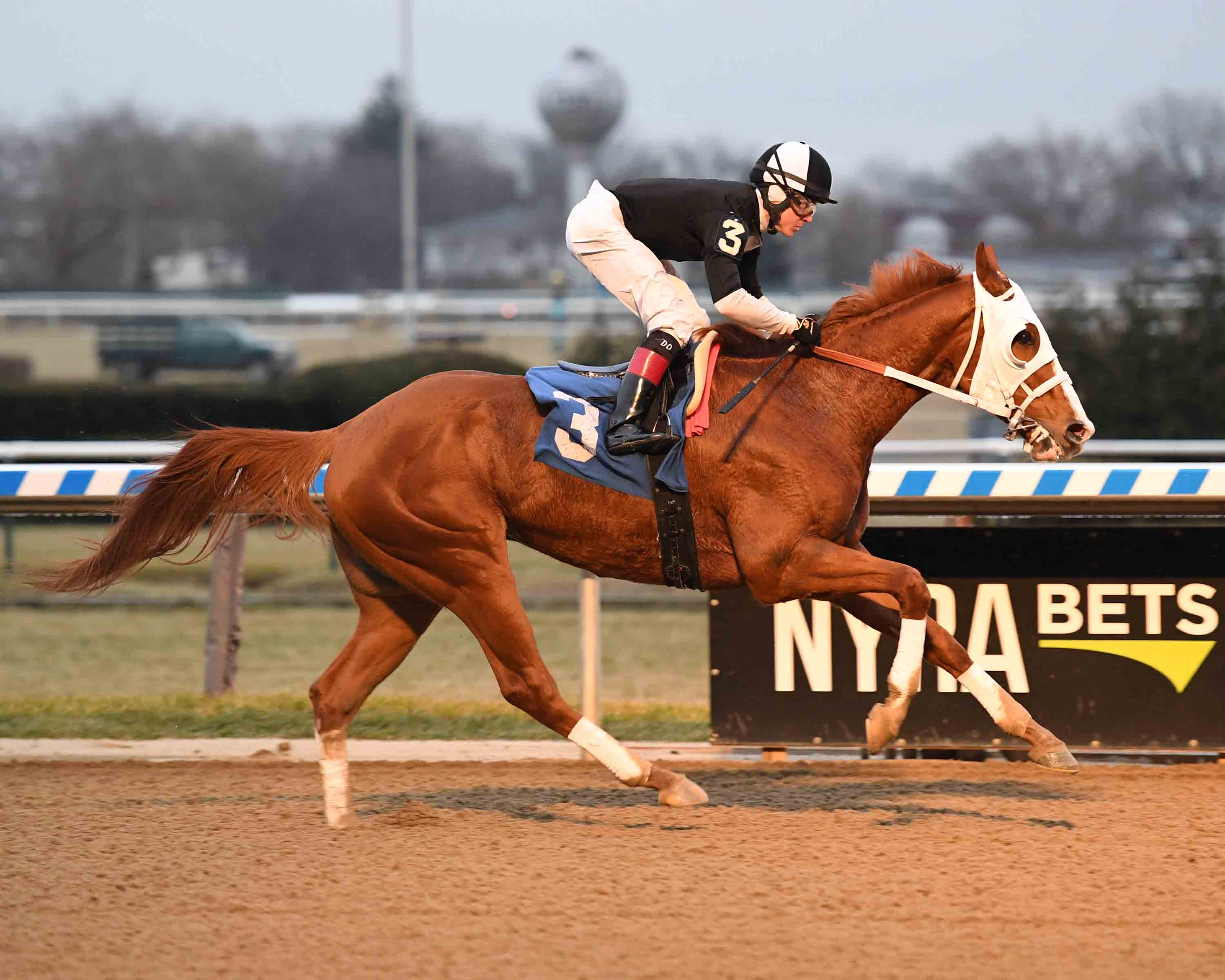 Bill Heller's New York-Breds at the Races: December 15 to 21