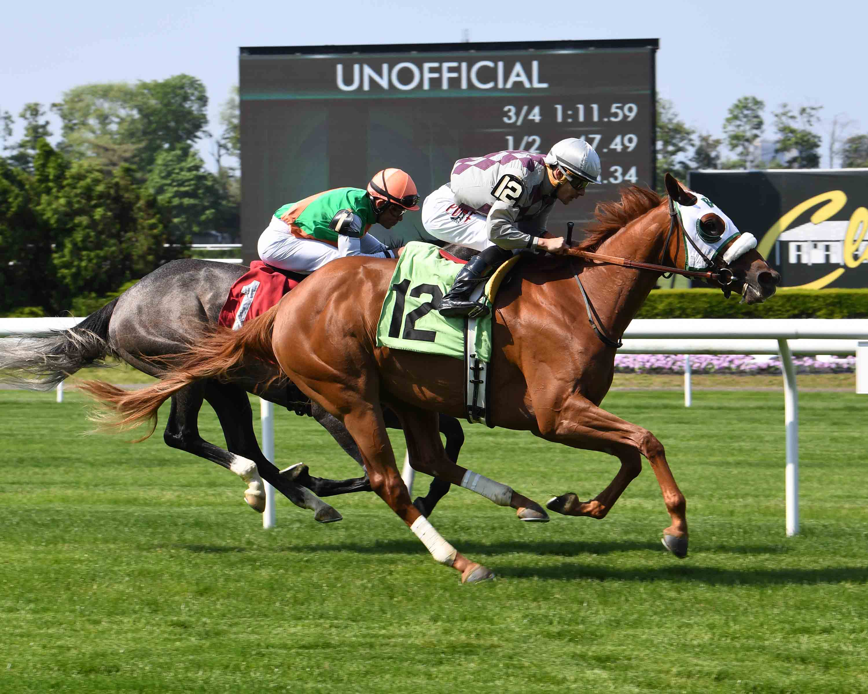 Bill Heller S New York Breds At The Races May 16 To 19 New York